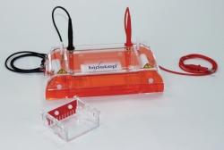 Elektrophoresekammern, horizontal GH102 Faust Laborbedarf AG Onlineshop