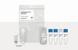 Gel / PCR / DNA Fragment Extraction Kit