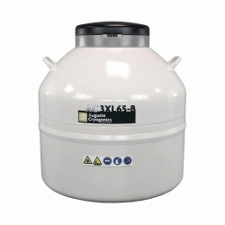Stickstoffbehälter AC 2XL-B/ AC 3XL-B
