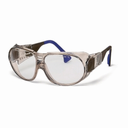 Schutzbrille, futura 9180 Faust Laborbedarf AG Onlineshop