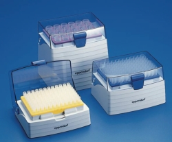 Pipettenspitzen epT.I.P.S. Box (General Lab Product)