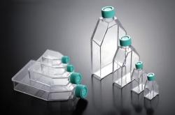 Zellkulturflaschen, behandelt, PS, steril