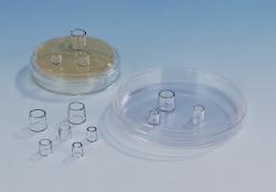 Klonierungszylinder, PS, steril